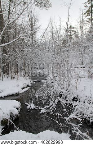 The Winter Landscape With Trees And River