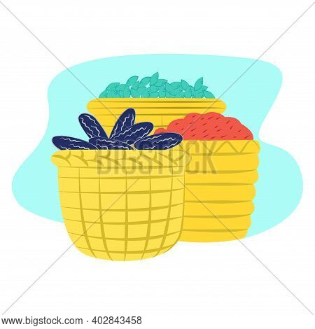 Variety Fruit, Berry Lying In Wicker Basket, Concept Sunflower Seed And Green Grain Flat Vector Illu