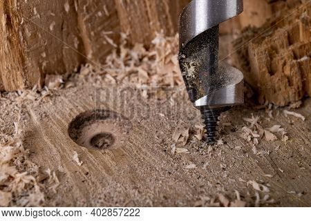 Drilling A Hole In Raw Wood With A Drill. Carpentry Accessories In The Workshop.