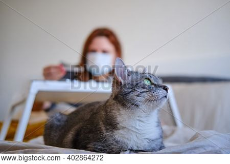 The Cat Is Lying At The Feet Of A Woman With Coronavirus. The Woman Looks At The Thermometer Lying I