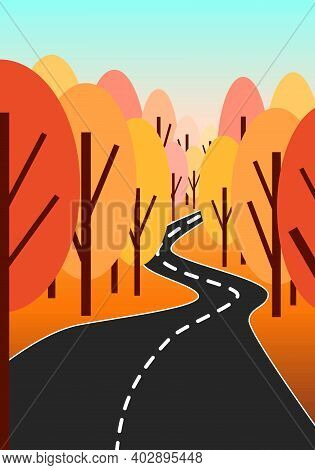 Sunset Landscape With Autumn Trees. Black Road In Forest. Yellow, Red, Pink And Orange. Blue Sky. Ve