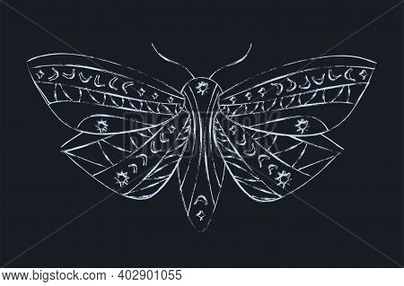 Mystical Mole Silhouette In Outline Style. Gothic Night Butterfly Abstract Vector Illustration Isola