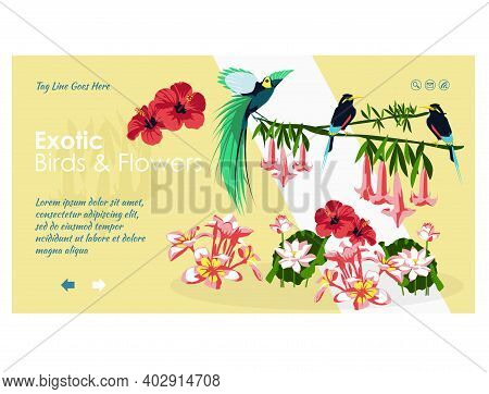 Exotic Birds And Flowers Landing Page Template. Paradise Nature, Jungle Forest Website, Homepage. Co