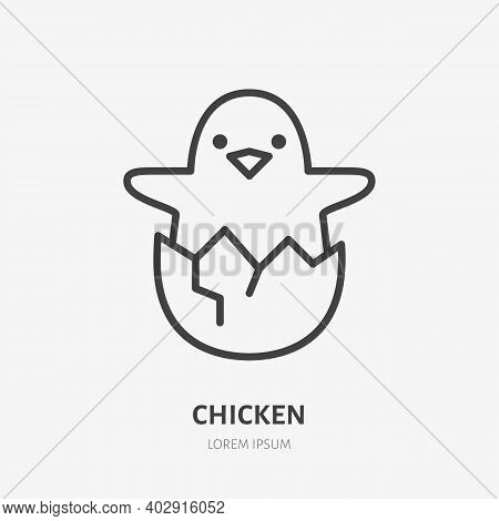 Baby Chicken Flat Line Icon. Vector Outline Illustration Of Little Hen In The Eggshell. Black Color