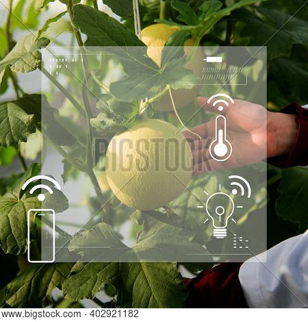 Smart agriculture 5.0 green plant product farming technology social media banner