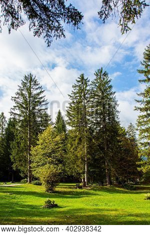 Green grassy lawns at the edge of a picturesque autumn forest. Beautiful sunny autumn day. Charming pastoral. Travel to Slovenia. Picturesque Julian Alps.