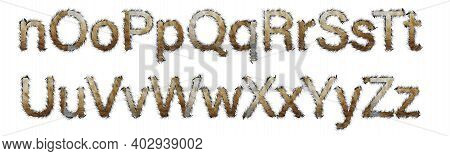 Letters Made Of Red Cat Hair Isolated On White. Part Of The Black Brown Font Of The English Alphabet