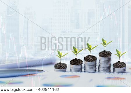 Growth Plants Economic On Stack Of Coins On Report Paper Analyze Performance Financial Graph Funding