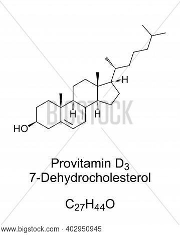 Provitamin Form Of Vitamin D3, Chemical Structure And Skeletal Formula. 7-dehydrocholesterol, 7-dhc.
