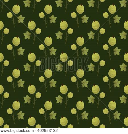 Vector Seamless Pattern With Green Gooseberry On Dark Green Background; For Wrapping Paper, Packagin