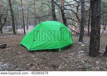 green tourist tent in pine forest