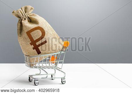 Russian Ruble Money Bag In A Shopping Cart. Public Budgeting. Profits And Super Profits. Economic Bu