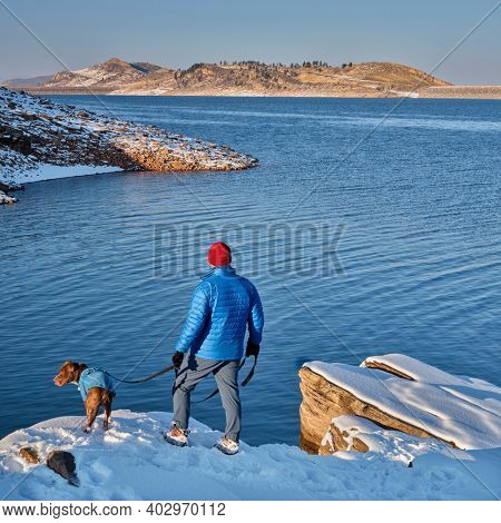 male hiker is walikng with pitbull dog on a shore of mountain lake at foothills of Rocky Mountains, Horsetooth Reservoir - a popular recreational area in northern Colorado in winter scenery