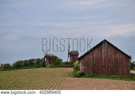 Old Windmills And A Barn By A Farmers Field On The Island Oland In Sweden