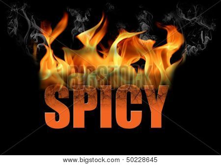 Word Spicy In Fire Text