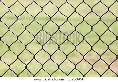 Wire fence with green gress background