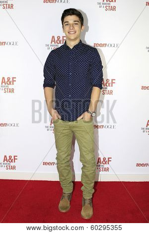 LOS ANGELES - FEB 22: Sean O'Donnell at the Abercrombie & Fitch 'The Making of a Star' Spring Campaign Party on February 22, 2014 in Los Angeles, CA