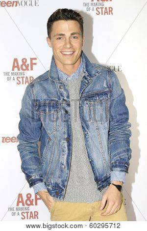 LOS ANGELES - FEB 22: Colton Haynes at the Abercrombie & Fitch 'The Making of a Star' Spring Campaign Party on February 22, 2014 in Los Angeles, CA
