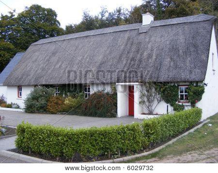 Cottage in Ashford castle