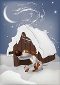 Night, winter, snow, wind and the frozen dog poster