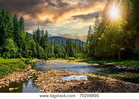 Forest River With Stones At Sunset