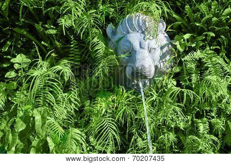 Stone Lion Head With Fountain In Green Plants