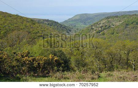 Horner Hill & Woods