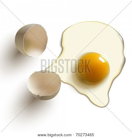 cracked raw egg, shell, yolk and albumen