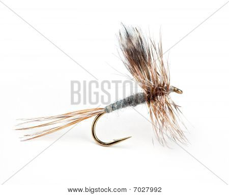 The Adams Dry; world's most popular dry fly for trout poster