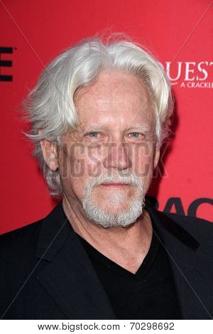 LOS ANGELES - AUG 14:  Bruce Davison at the Crackle Presents the Premieres of