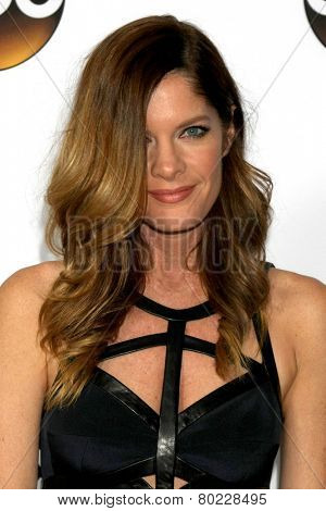 LOS ANGELES - JAN 14:  Michelle Stafford at the ABC TCA Winter 2015 at a The Langham Huntington Hotel on January 14, 2015 in Pasadena, CA