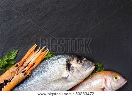 Fresh Fish And Seafood