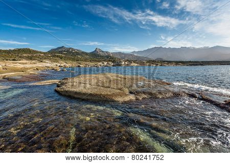 The coastline and mountains at Punta Caldanu near Lumio in the Balagne region of Corsica poster
