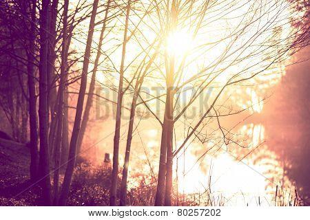 Sunrise Trail Scenery