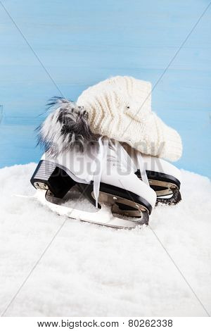 Ice skates with cap on the snow