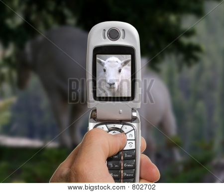 A mobile camera