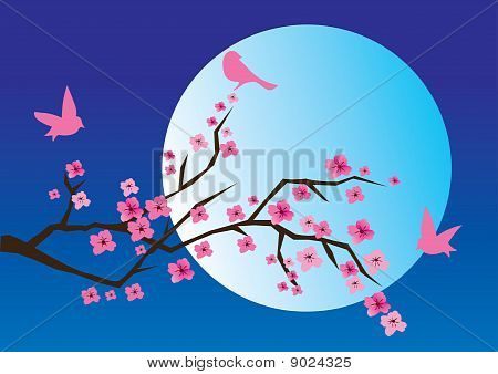 Vector cherry blossom with birds and moon at the background poster