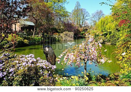 The Dingle Pond, Shrewsbury.