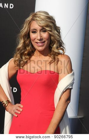 lori greiner jewelry box