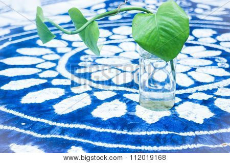 Green Plant Decorated On The Table