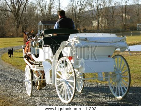 White carriage drawn by Clydesdale horse poster