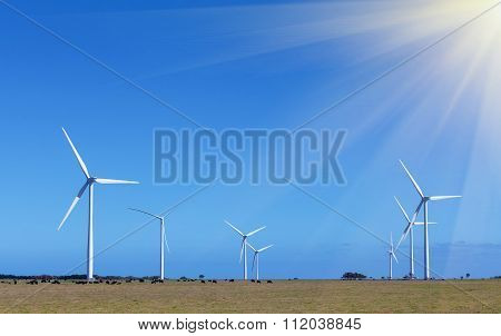 Windfarm (group Of Windmills) - Clean Energy Production