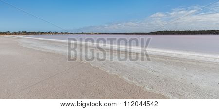 Pink Salt Lake Becking Landscape