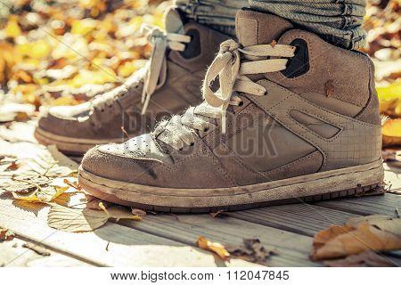 Warm Sneakers, Sporty Shoes Standing Wooden Floor