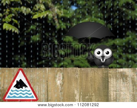 Bird sheltering from the rain with severe flood warning sign poster