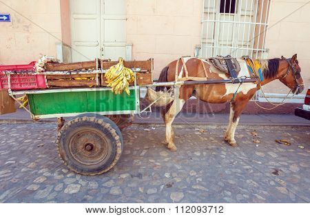 Horse Cart In The Old Town, Trinidad, Cuba