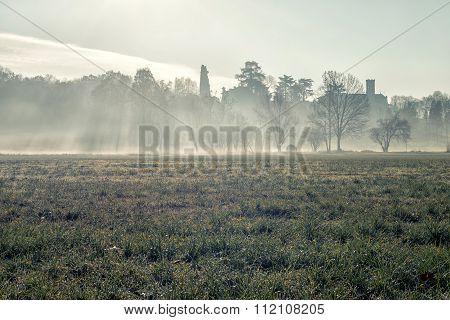Low Fog