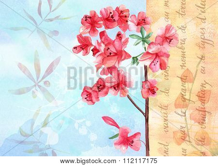 Vintage background texture with watercolour drawing of branch of pink flowers