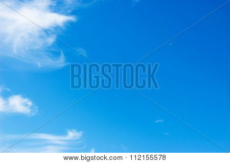 Blue Sky, White Clouds, Flying Cranes..
