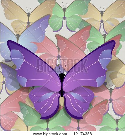 brigt lilac butterfly
